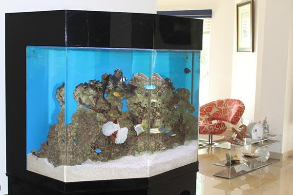 acrylic-fish-tank-003