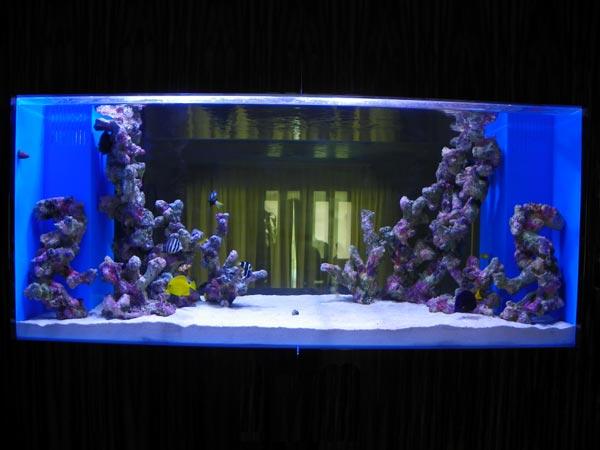 acrylic-fish-tank-010