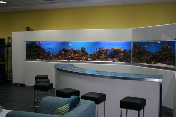 acrylic-fish-tank-024