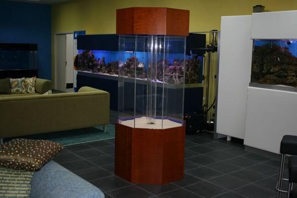 acrylic-fish-tank-025
