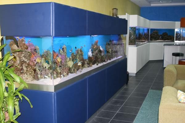 acrylic-fish-tank-027