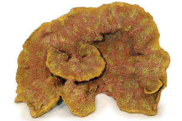 nep147-specimen-coral-aquarium-decoration-1