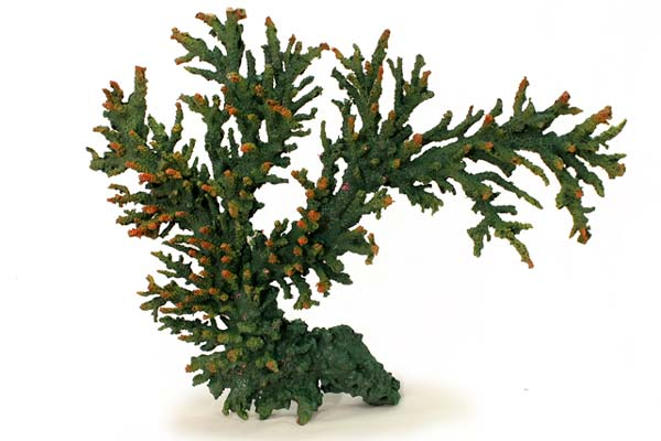 nep150-specimen-coral-aquarium-decoration-1